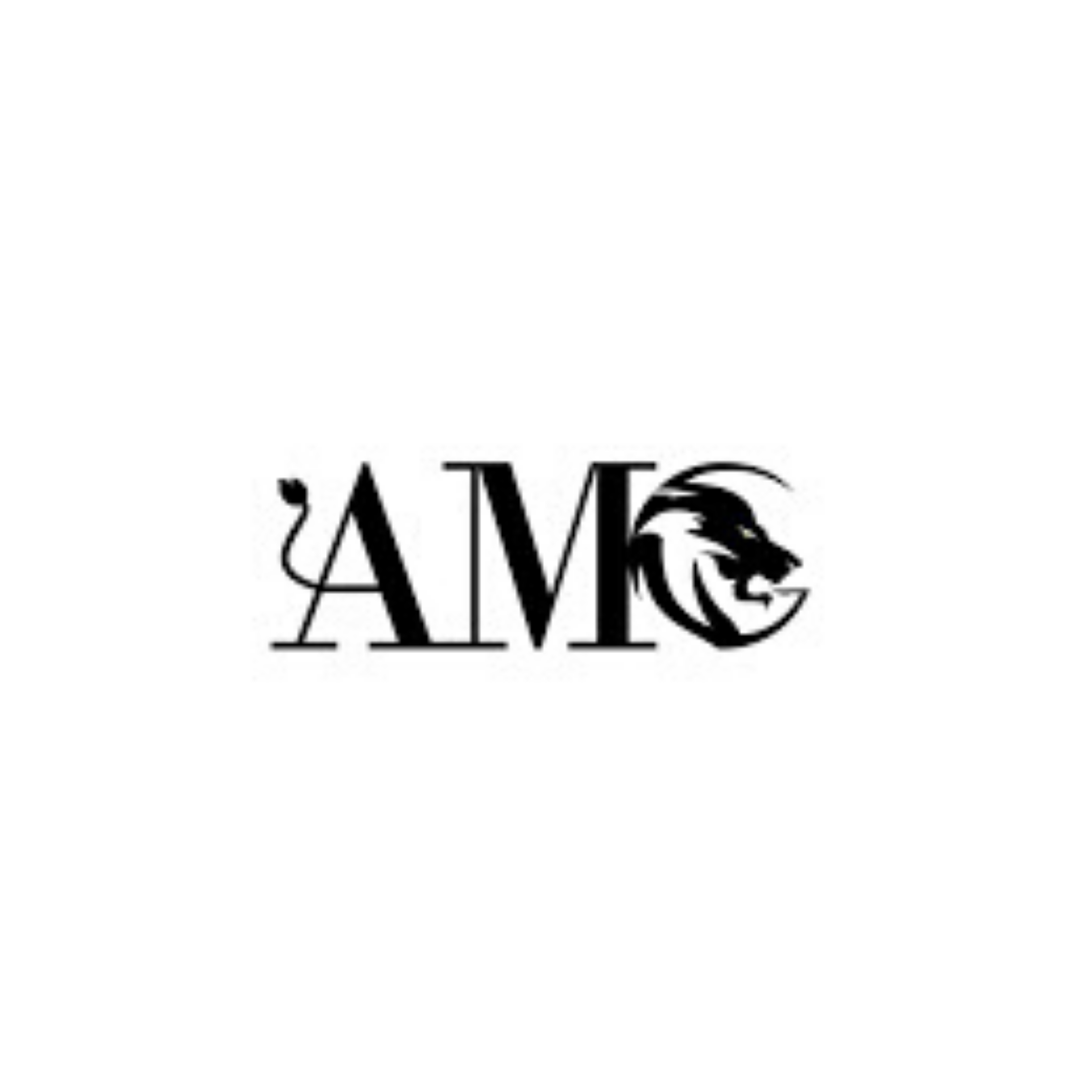 AMG Luxury Group